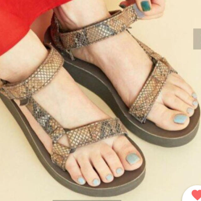 Teva(テバ)の【TEVA パイソン サンダル 25】テバ  アローズ レディースの靴/シューズ(サンダル)の商品写真