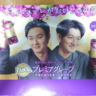 コカコーラ(コカ・コーラ)の松田龍平 永山瑛太Fantaプレミアムグレープオリジナルパネル(男性タレント)