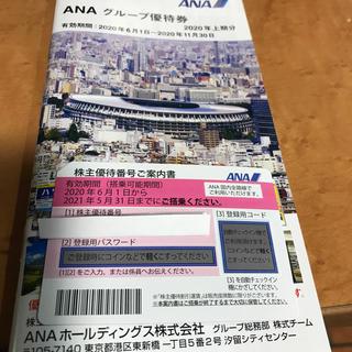 エーエヌエー(ゼンニッポンクウユ)(ANA(全日本空輸))のANA 株主優待券 一枚(その他)