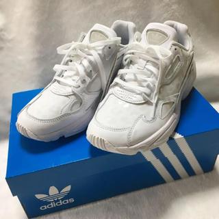 adidas - adidas アディダスファルコン ADIDASFALCON W