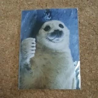 ポストカード(使用済み切手/官製はがき)