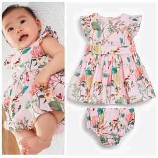 NEXT - 新品❣️ネクスト ドレスとブルマセット ピンク