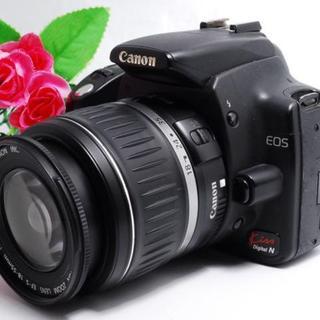 キヤノン(Canon)の【初心者にオススメ!】Canon kiss N レンズセット(デジタル一眼)