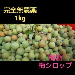 完全無農薬 梅1kg(フルーツ)