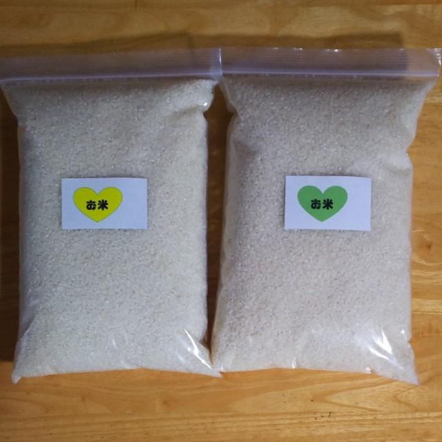 【令和元年産 白米 5kg】農家のコシヒカリ 食品/飲料/酒の食品(米/穀物)の商品写真