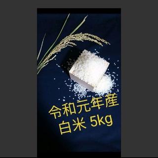 【令和元年産 白米 5kg】農家のコシヒカリ