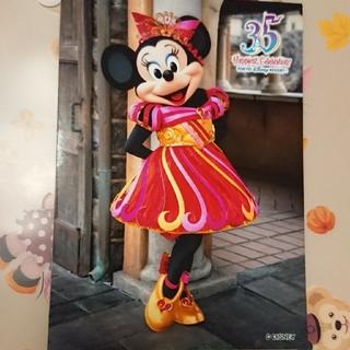 ディズニー(Disney)のミニー 35周年 スペシャルフォト(キャラクターグッズ)
