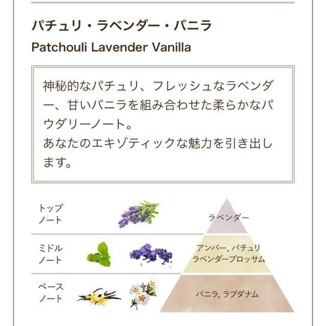 SABON(サボン)のサボンのシャワーオイル コスメ/美容のボディケア(ボディソープ/石鹸)の商品写真