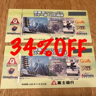 富士急 フリーパス 2枚(遊園地/テーマパーク)