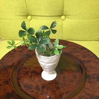 和の花器(花瓶)