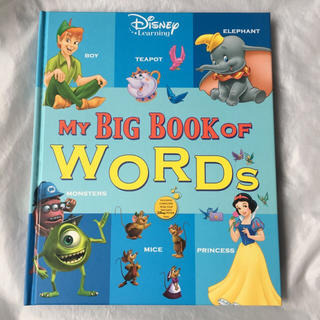 my big book of words(洋書)