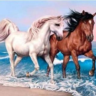A3サイズ 浜辺を走る2頭の馬 Rond全面貼り付タイプ ダイヤモンドアート(その他)