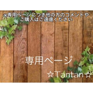 アクアビーズキラキラビーズ全8色セット△変更不可(その他)