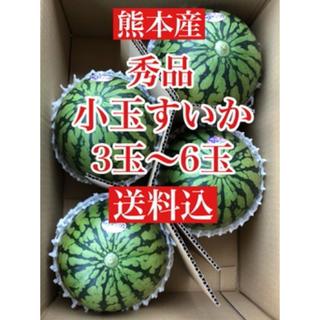 熊本産  秀品 小玉スイカ  3〜6玉入り 送料込(フルーツ)