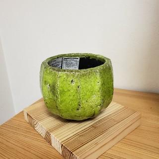 Francfranc - サボさん鉢カバー
