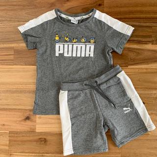 PUMA - プーマセットアップ