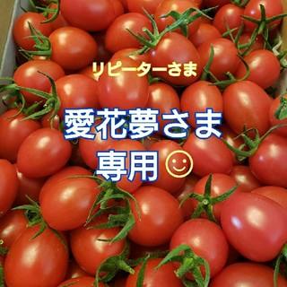 3㎏ 愛花夢さま専用です☺️ ミニトマト(野菜)