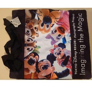 Disney - ディズニー イマジニングザマジック 実写トート