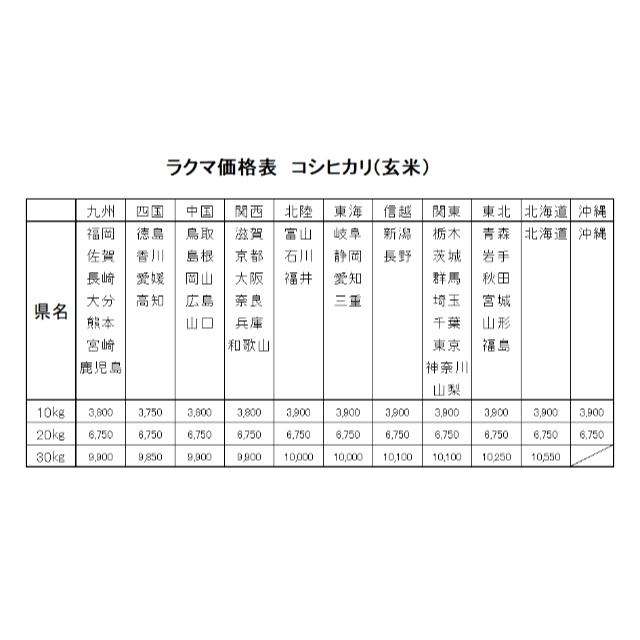星様専用  お米 令和元年 愛媛県産コシヒカリ 玄米 30㎏ 食品/飲料/酒の食品(米/穀物)の商品写真