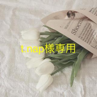 t.nap様専用(その他)