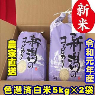 新米・令和元年産新潟コシヒカリ 白米5kg×2個★農家直送★色彩選別済01(米/穀物)
