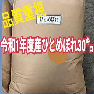 米   令和元年産ひとめぼれ(米/穀物)