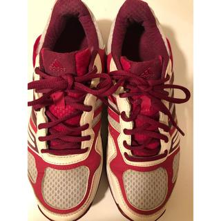 アディダス(adidas)のadidas テニスシューズ レディース(テニス)