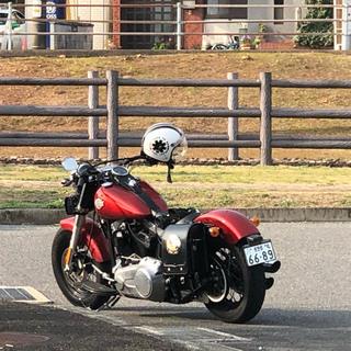 Harley Davidson - バイク