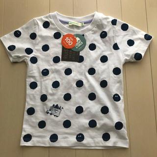 コドモビームス(こども ビームス)のセール!今季新作!新品タグ付き!ビームスミニ マリモ ドット Tシャツ 100(Tシャツ/カットソー)