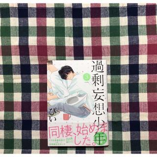 過剰妄想少年 3 /ぴい(ボーイズラブ(BL))
