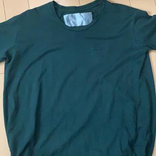 ドゥルカマラ(Dulcamara)のDULCUMARA バルーンTシャツ(Tシャツ/カットソー(半袖/袖なし))