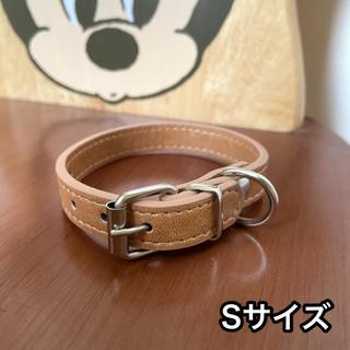 【送料込み】新品未使用 犬 猫 首輪 シンプル 小型犬 超小型犬 Sサイズ(犬)