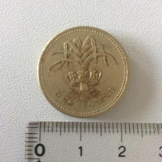 イギリス 1985年 エリザベス女王像 1ポンド黄銅貨(貨幣)