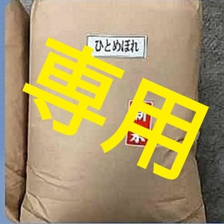 makoto様専用 白米 10キロ(米/穀物)