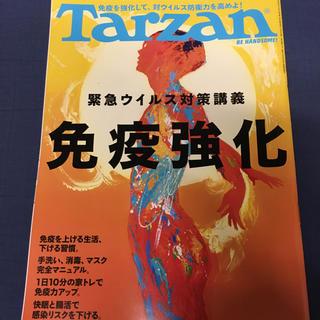 Tarzan 2020年 6/2 免疫強化 ターザン(趣味/スポーツ)