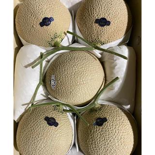 静岡 高級アールスメロン5玉 隔離栽培 アローマ