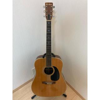 Pro Martin アコースティックギター(アコースティックギター)