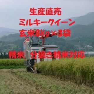 令和元年産 ミルキークイーン玄米24kg お届け先【関西 中国 四国】限定(米/穀物)