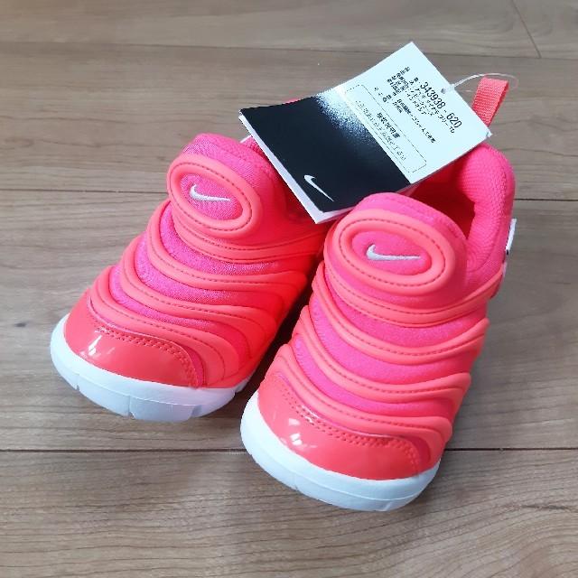 NIKE(ナイキ)の[新品] NIKE ダイナモフリー 15.0  キッズ/ベビー/マタニティのキッズ靴/シューズ(15cm~)(スニーカー)の商品写真
