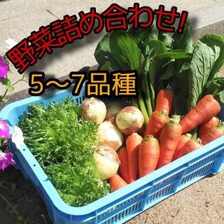 野菜詰め合わせ 5〜7品種 野菜セット お試し野菜セット