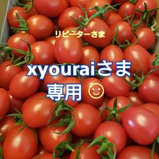 4kg xyouraiさま専用です☺️ ミニトマト(野菜)