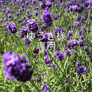 motherways - マザウェイズ パジャマ 120 花柄 ピンク 小花柄