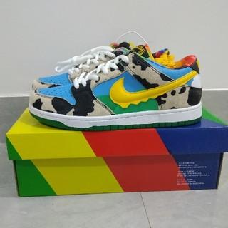 27cm Nike Dunk Low PRO SB