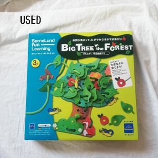 BorneLund - used◆Big Tree in the Forest