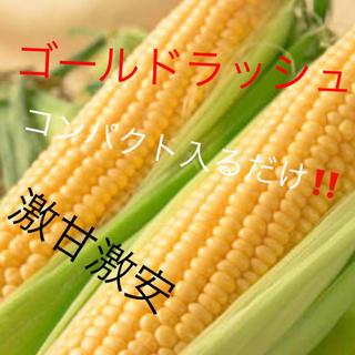 専用コンパクト温泉卵様(野菜)