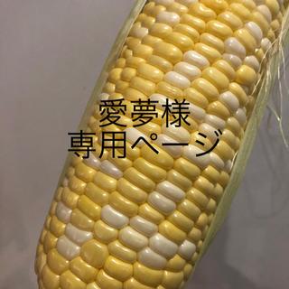 愛夢様専用ページ とうもろこし(野菜)