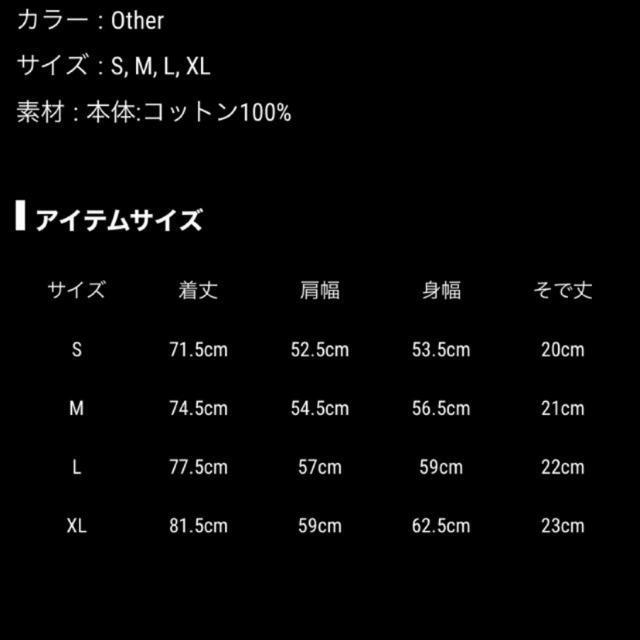 三代目 J Soul Brothers(サンダイメジェイソウルブラザーズ)の登坂広臣 CLAIR DE LUNE Tee エンタメ/ホビーのタレントグッズ(ミュージシャン)の商品写真