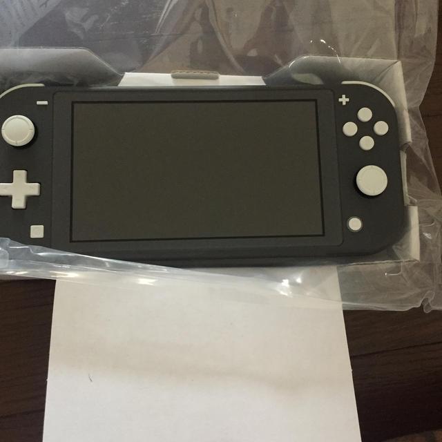 Nintendo Switch(ニンテンドースイッチ)のSwitch light 中古 エンタメ/ホビーのゲームソフト/ゲーム機本体(家庭用ゲーム機本体)の商品写真