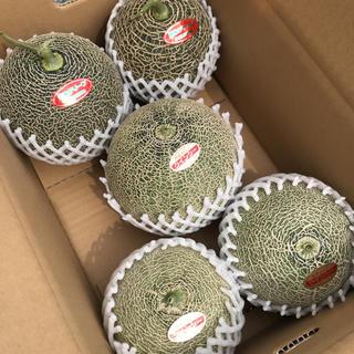 メロン2種小玉セット(フルーツ)