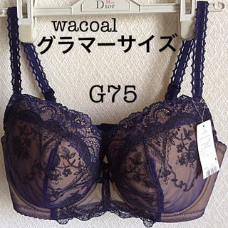Wacoal - 【新品タグ付】ワコール★希少サイズ★amphiブラ G75